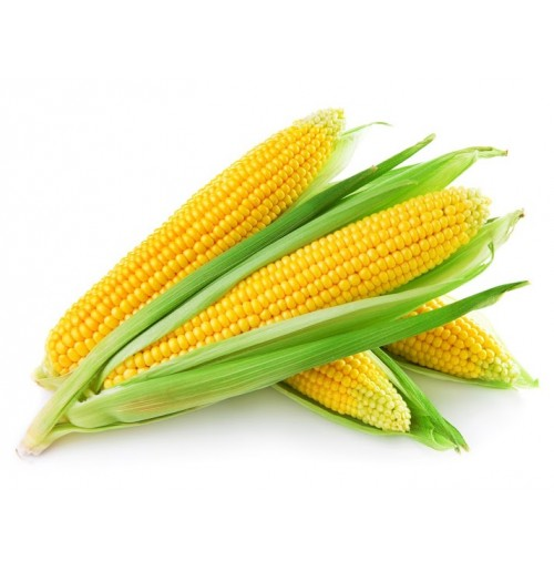 Corn Sweet - unpeeled