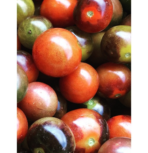 Seeds - Blue Gold Berries Tomato