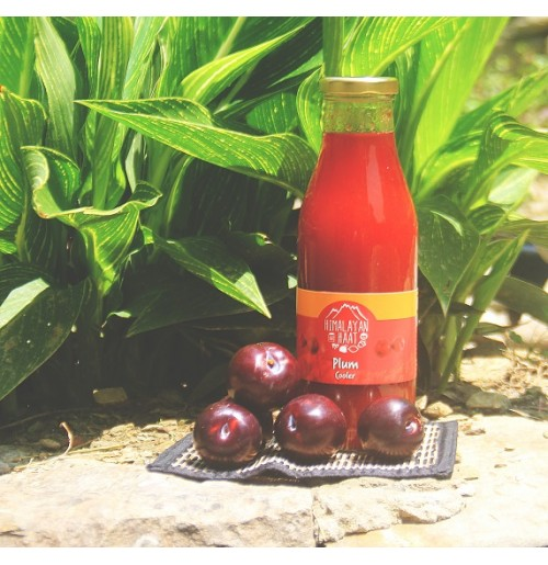 Cooler - Plum (Juice Concentrate)