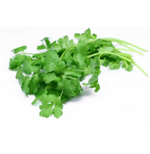 Coriander (Small Bunch - 100g)  - Average Quality