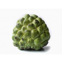 Custard Apple (Regular)