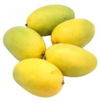 Mango - Dasheri (Will take 2-4 days to ripe)