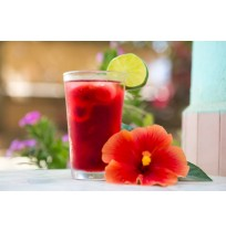 Hibiscus Juice Concentrate (WITHOUT SUGAR)