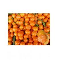 Mini Mandarin Orange (500g)