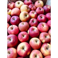 Organic Apples - RED GOLD