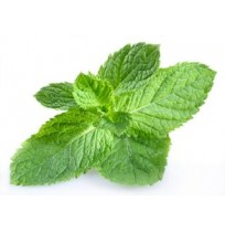 Pudhina (Mint) Leaves