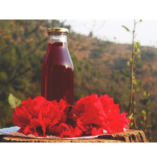 Cooler - Spiced Buransh / Rhodo (Himalayan Wild Flower Juice Concentrate) - Ltd. Edition
