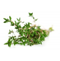 Thyme (50g packed in a plastic ziplock)