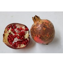Ugly Pomegranates (Beautiful Inside)