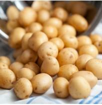 Baby Potato (Ooty)