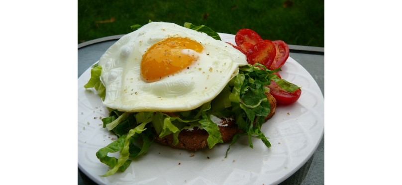 Egg Arugula Open Sandwich