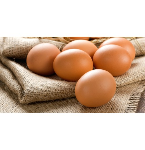 "Brown ""Free  Range"" DOZEN EGGS BIG BOX"