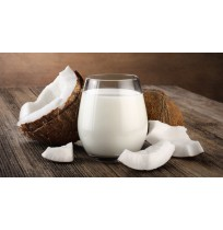 Coconut Milk 160ML