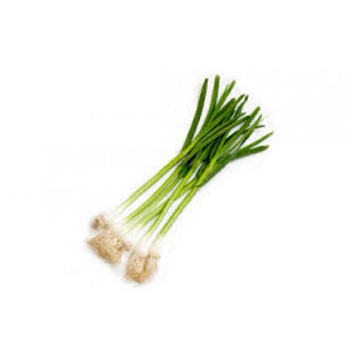 Green Garlic (150g each Bunch)