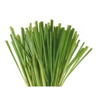 Lemon Grass Leaves