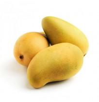 Mango - Kesar