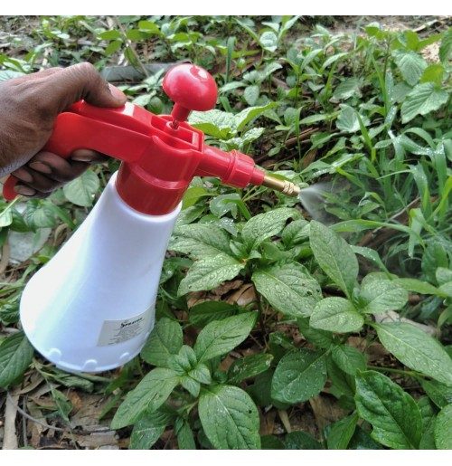 Hand Compression Sprayer (1 litre)