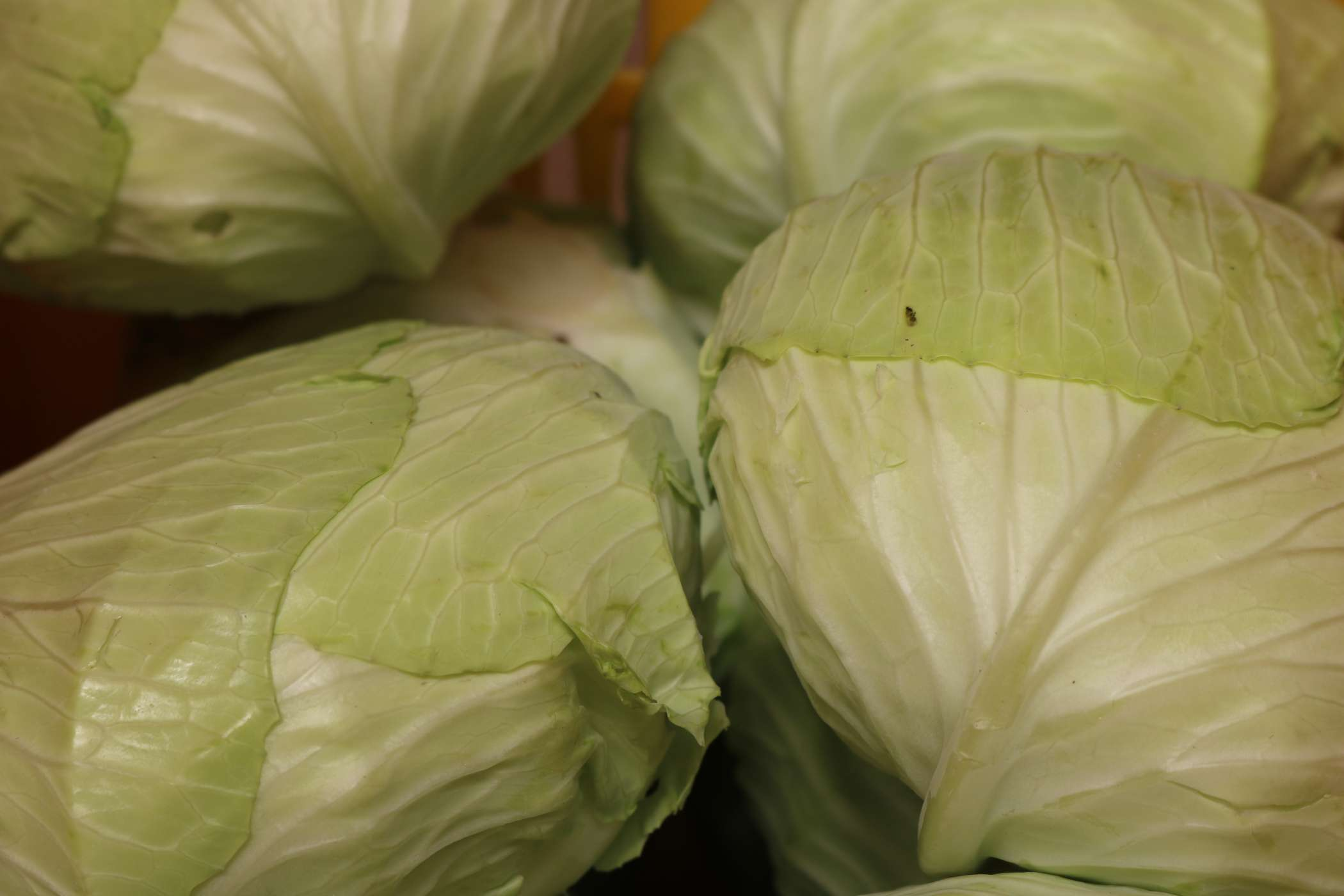 Our Pesticide Residue Test Result for Cabbage is Here