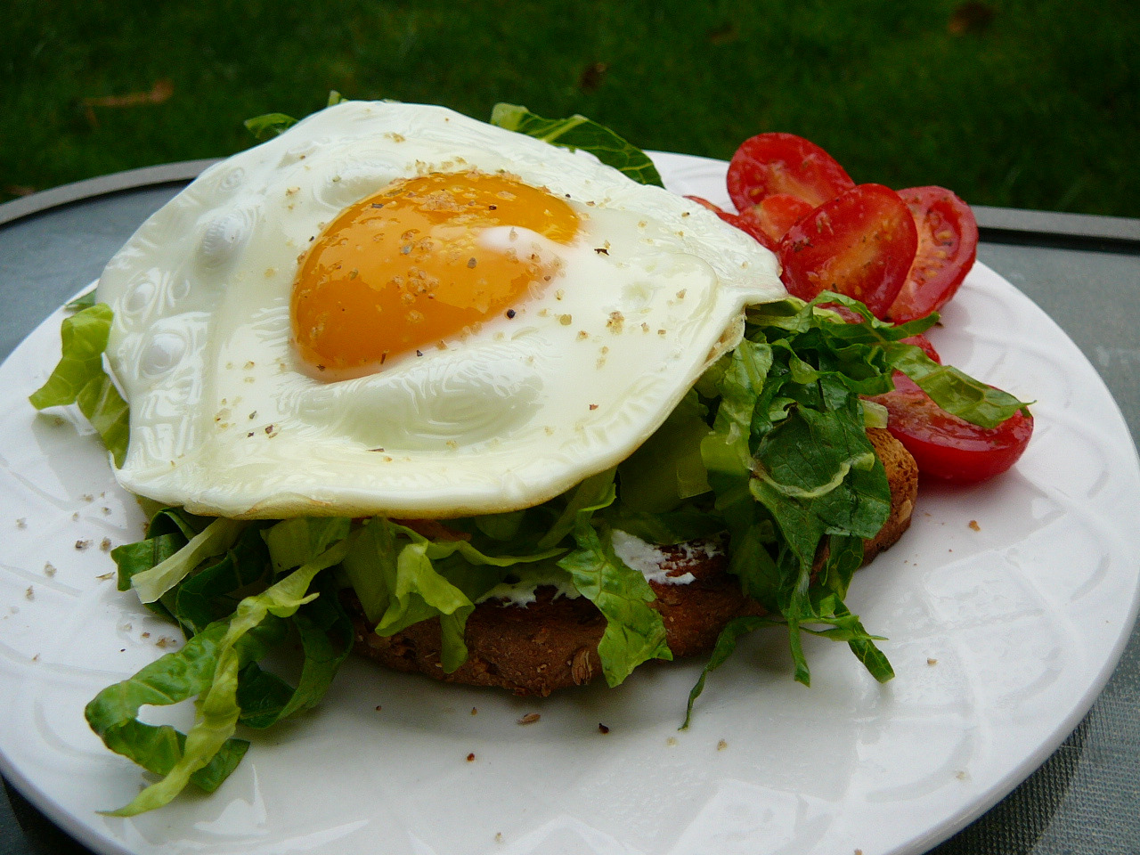 Egg Arugula Open Sandwich